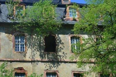 Ein Baum wächst durchs Dach, mehrere Fenster sind kaputt. Die Rückansicht zeigt: Schloss Neusorge ist in besorgniserregendem Zustand.