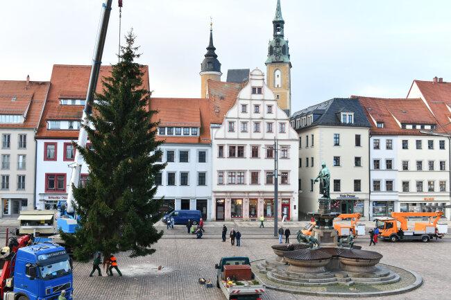 Der Weihnachtsbaum auf dem Freiberger Obermarkt ist am Dienstagvormittag aufgestellt worden.