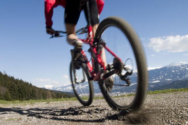 Der Typ des Rades muss dem Zweck entsprechen und auf die Körpergröße abgestimmt sein.