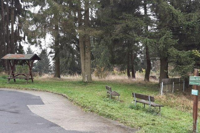 Vor allem im hinteren, teilweise bewachsenen Bereich und an der Umzäunung wirkt diese Fläche an der Gemeindestraße in Bermsgrün vernachlässigt. Hier soll 2022 ein ordentlicher Rastplatz entstehen.