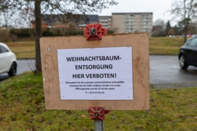 Wo in Rochlitz früher Sammelstellen für Weihnachtsbäume waren, stehen jetzt Verbotsschilder - wie hier an der Leipziger Straße. Die Schilder enthalten den Hinweis, die Bäume im Wertstoffhof zu entsorgen.