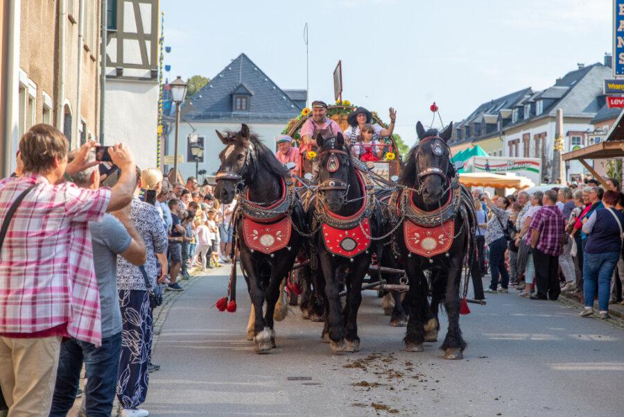 Der Festumzug zum Pferdetag lockte viele Besucher.