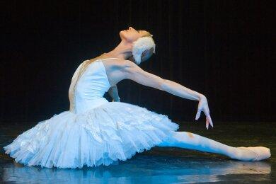 """Von 2011 bis 2017 gehörte Elena Tumanova zum Ensemble des Theaters Plauen-Zwickau, hier in einer Szene aus """"Schwanensee"""". Ihre Schwester Ekaterina ist als Choreografin weiter am Theater tätig."""