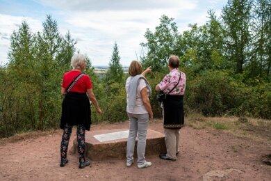Am Rochlitzer Panoramablick lässt sich nur erahnen, was hinter den Lärchen zu sehen ist. Eine Lösung für das Problem ist nicht in Sicht.