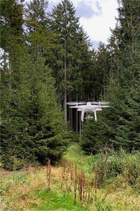 Mit ihren Drohnen will die Envia M erkunden, ob Wälder vom Borkenkäfer befallen sind.