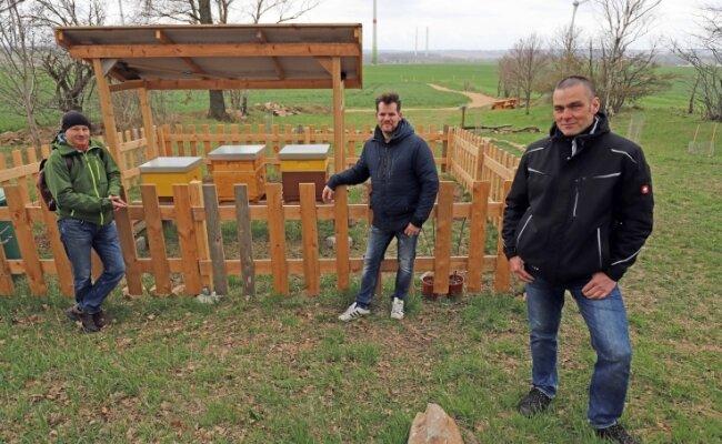 Dirk Schmidt, André Melzer und Hobbyimker Alexander Uhlig (v. l.) an den Bienenstöcken, die am Abzweig des Viehwegs in Richtung Hilbersdorf aufgestellt wurden.