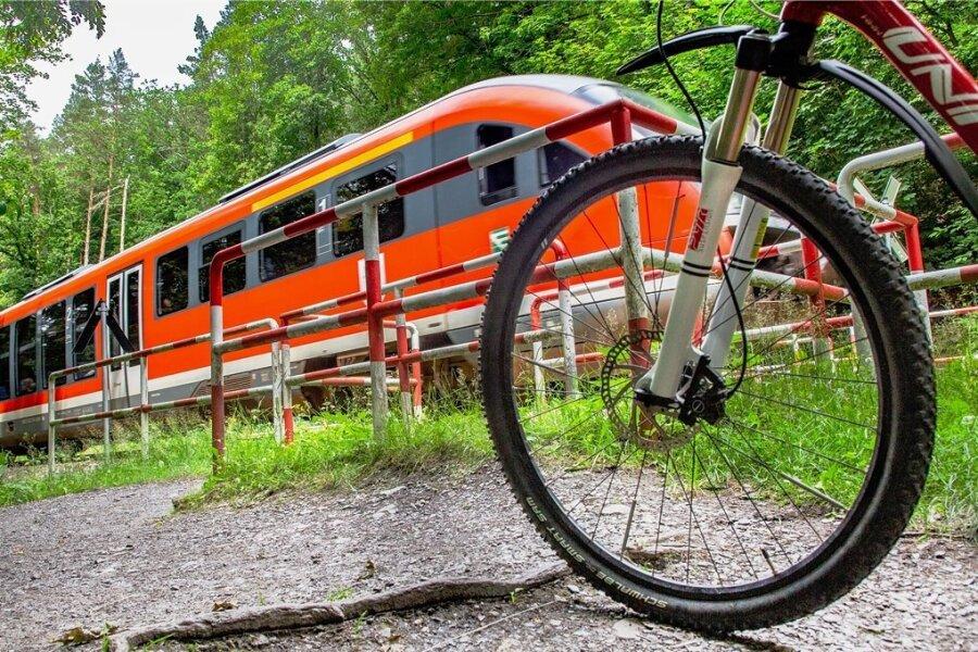 Am Bahnübergang am Radweg zwischen Flöha und Erdmannsdorf müssen sich Radfahrer durch ein Gitter drängeln.