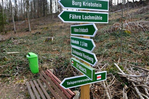 An diesem Hang in Erlebach an der Talsperre Kriebstein mussten viele Bäume gefällt werden.