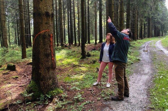 Revierförster Jan Zieger erläutert der Schönecker Hauptamtsleiterin Ute Dähn, welche Bäume in den nächsten Wochen entlang der Loipentrasse gefälltwerden sollen.