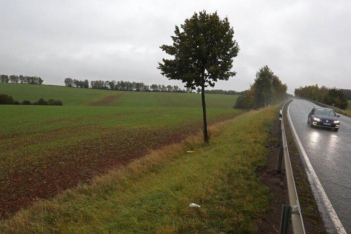 Die Möglichkeit auf ein Gewerbegebiet an der B 173 will sich die Mehrheit der Stadträte Lichtensteins nicht verbauen.