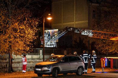 Kameraden der Freiwilligen Feuerwehr bargen den Jungen aus der Göltzsch.