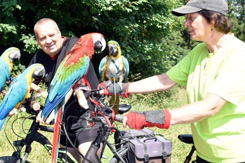 Zwei Hessen und vier Papageien erkunden per Fahrrad das Vogtland