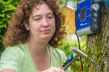 Christiane Müller untersucht bei ihren Einsätzen den Zustand der Bäume mit einem Schalltomographen.