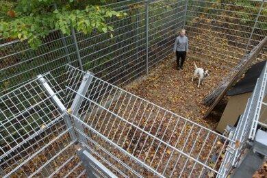Im Tierheim Langenberg gibt es einen neuen Sicherheitszwinger für Hunde, die gefährlich sein könnten.