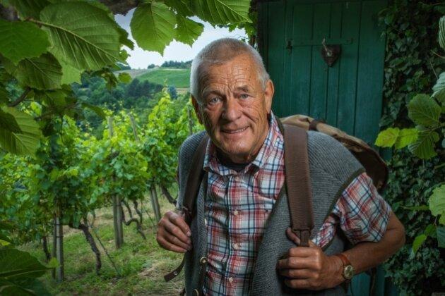 Weinbau kann in Arbeit ausarten: Ludwig Martin Rade in seinem Weinberg bei Sörnewitz.