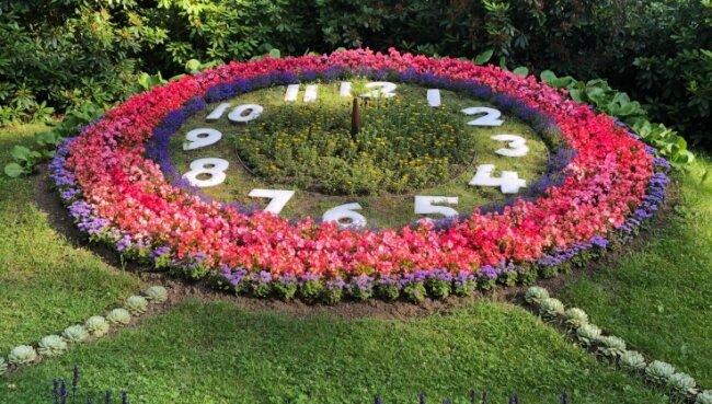 Von der Hainichener Blumenuhr sind die Zeiger entfernt worden. Voraussichtlich im August sollen sie wieder installiert werden.