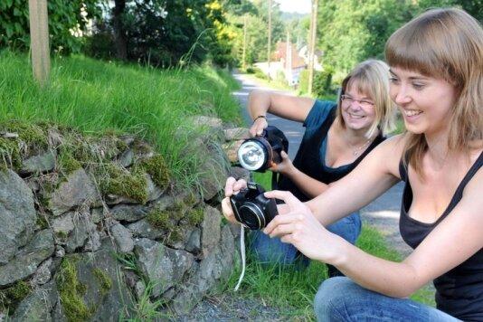 """<p class=""""artikelinhalt"""">An einer Bruchsteinmauer in Reichenbach spüren die Geoökologie-Studentinnen Tina Preißer und Josephine Fleischer Feuersalamander auf. </p>"""