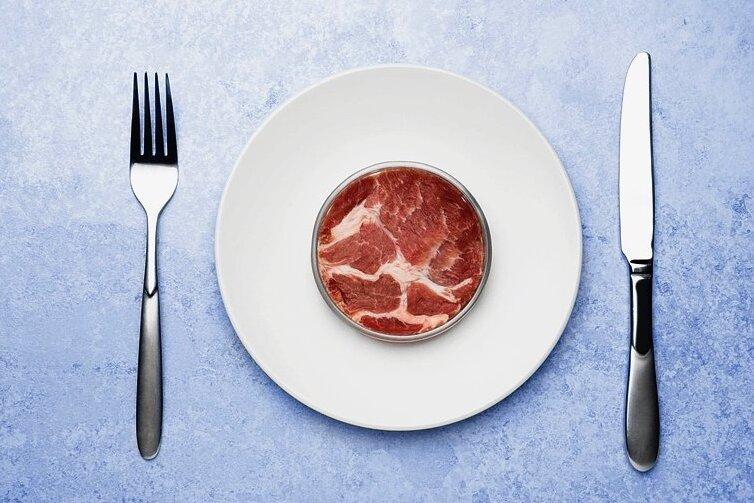 Schon bald massentauglich: künstliches Fleisch aus Stammzellkulturen.