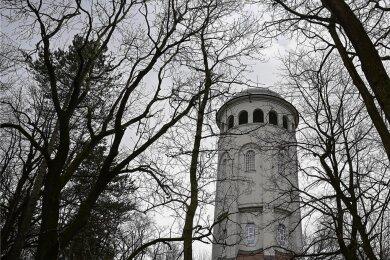 Das Wahrzeichen von Burgstädt ist der Taurasteinturm, dem im Klimaschutzprojekt eine besondere Rolle zukommen soll.