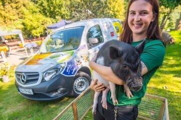 Glücksschwein Rudi mit Tierpflegerin Josephine Nöbel vorm neuen Kleintransporter.