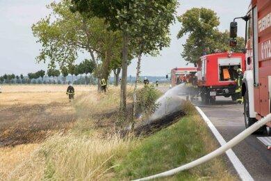 Zu einem Feldbrand an der Bundesstraße 173 zwischen Memmendorf und dem Abzweig Kirchbach sind Sonntag mehrere Feuerwehren ausgerückt.