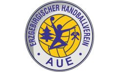 EHV Aue verliert Sachsenderby in Dresden 25:29