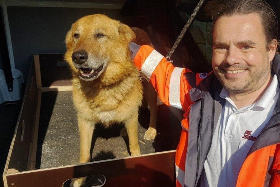 """Sebastian Oberhardt rettet als Rettungssanitäter in der Ausbildung üblicherweise Menschen. Auf dem Weg zu einem Notfalleinsatz nach Aue-Bad Schlema stieg Oberhardt, der ein Praktikum in der Johanniter-Rettungswache Lugau absolviert, am Mittwoch aber mitten auf dem Autobahnzubringer bei Alberoda aus. Denn er und seine Kollegen hatten auf der Schnellstraße einen Hund entdeckt. Da der Rettungswagen mit drei Leuten besetzt war, sagte Oberhardt: """"Lasst mich aussteigen, ich kümmere mich um den Hund, damit er sich und andere nicht in Gefahr bringt."""" Die Kollegen informierten die Leitstelle und konnten ohne Verzögerung zu ihrem Einsatz fahren, während Oberhardt mit dem Hund an der Straße auf die Polizei wartete. Der Mischlingshund wurde ins Stollberger Tierheim gebracht und kurz darauf von den Besitzern abgeholt. kan"""