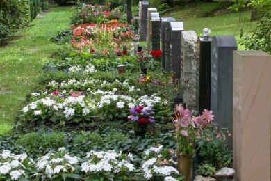 28 Hektar groß und für die einst boomende Großstadt Plauen angelegt: Der Hauptfriedhof in Reusa bietet eine Vielfalt an Grabstätten und ist heute zugleich eine wertvolle und eindrucksvolle Parkanlage.