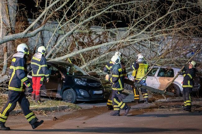 Am Feldschlösschen in Auerbach wurden vier geparkte Pkw durch einen Baum fast vollständig demoliert.