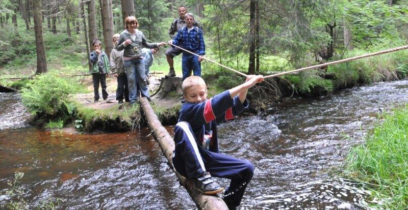 """<p class=""""artikelinhalt"""">Auf Schatzsuche im Geyerischen Wald begaben sich 20 Kinder aus dem Vogtland, die in der Jugendherberge Hormersdorf wohnen. Kurz vor dem Ziel mussten sie diese Mutprobe bestehen. </p>"""