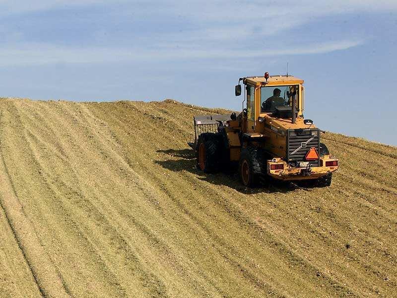 Biogas entsteht durch Vergärung von Energiepflanzen