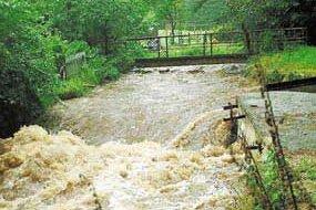 Die Pyra im Waldgebiet gebärdet sich nach den ergiebigen Regenfällen seit  dem 11. August wie wild.