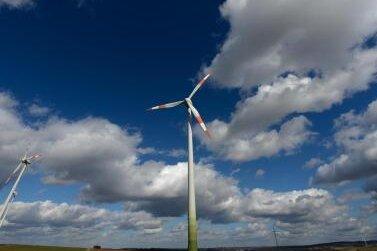Windradpläne in Lengenfeld wackeln: Ornithologen finden Rotmilan und Schwarzstorch