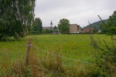 Auf der Wiese zwischen Dammweg und Schäferstraße soll ein Wohngebiet entstehen.