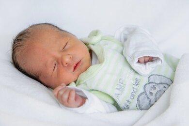 Der kleine Alexander kam kürzlich in Aue zur Welt.