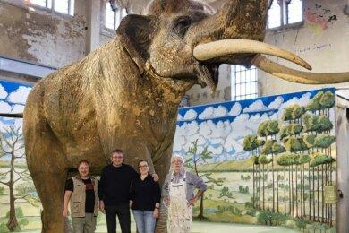 Elefantenstarkes Team: In der Pfännerhall Braunsbedra hat Günter Eckardt (r.) mit Dominique Görlitz (l.), Harald Lanta und Heike Vogel den Hintergrund für die Präsentation des Urelefanten geschaffen.