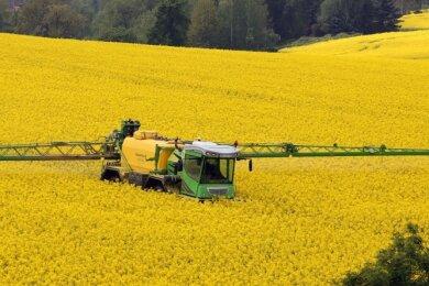 Durch die feuchte Witterung im Mai sind die Landwirte mit dem Pflanzenschutz etwas in Verzug geraten.