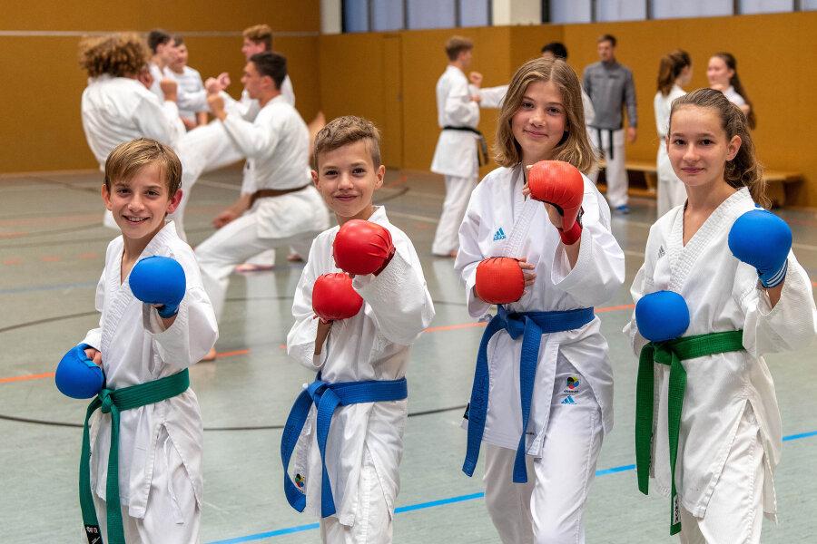 zu Karate Do Rochlitz: (vorn v.li.) Jonas Schneider, Moritz Lehmann, Lilly Leißner und Fenja Fabian.