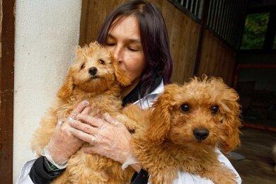 """Bozena Eck mit zwei der fünf Welpen im Tierheim """"Neu-Amerika"""". Bald geht es für sie in ein neues Zuhause."""
