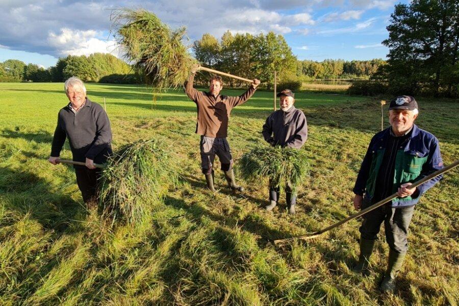 Schonende Grasmahd am Burgteich zum Schutz seltener Pflanzen