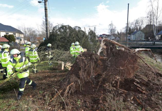 in St. Egidien beschädigte eine entwurzelte Fichte auf der Durchfahrtsstraße in Höhe der Turnhalle Stromkabel.
