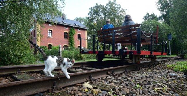 Die Besitzer des Bahnhofes in Köthensdorf bieten Draisinefahrten an. Die Fahrt kostet 1 bzw. 0,50 Euro.