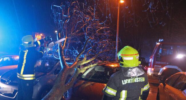 in Lichtenstein fiel ein Baum auf mehrere geparkte Pkw.