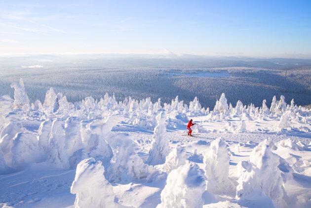 Traumhaftes Winterwetter auf dem Fichtelberg