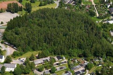 Blick auf die alte Halde 65 vor der Sanierung - damals noch ein großer Hügel mit Wald.