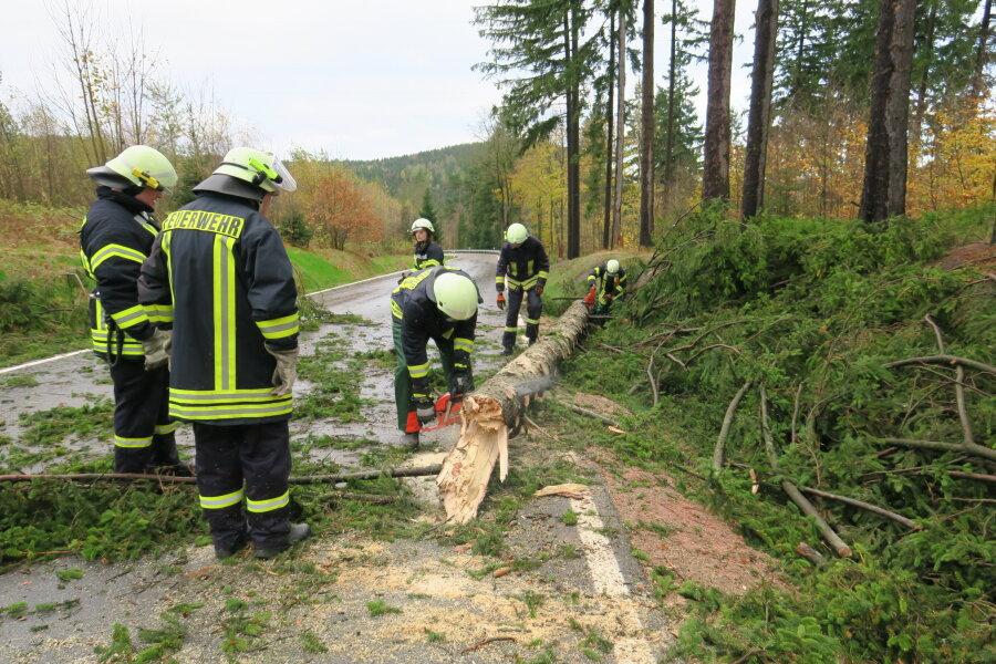 Umgestürzte Bäume auf der Fahrbahn in Eibenstock