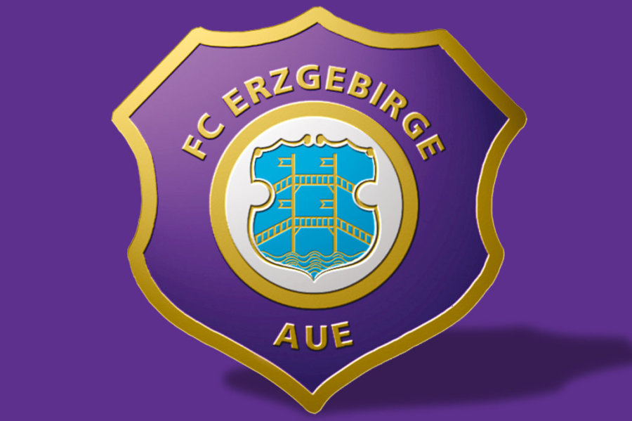 DFB-Sportgericht:Aue muss 8000 Euro Strafe zahlen