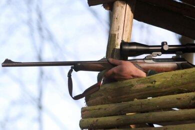 Ein Jäger muss mit großer Verantwortung entscheiden, ob er einen Schuss gefahrlos abgeben kann.