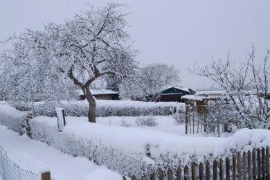 Allein in der Gartensparte Cunsdorf - der größten im Vogtland - werden in diesem Jahr etwa 90 Gärten zurückgebaut.