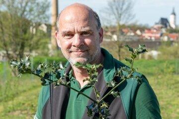 Olaf Kroggel vom DSW-Vorstand zeigt eine Europäische Stechpalme.